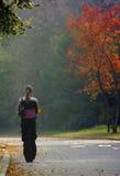 Autumn walk. The girl walks on autumn park royalty free stock photos