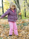 Autumn walk Royalty Free Stock Photos