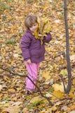 Autumn walk Royalty Free Stock Image