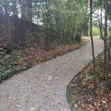 Autumn Walk images stock