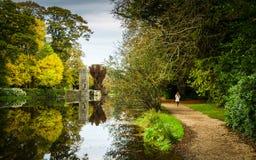 Autumn Walk imágenes de archivo libres de regalías
