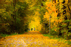 Autumn Walk Photographie stock