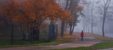 Autumn Walk Stock Afbeelding