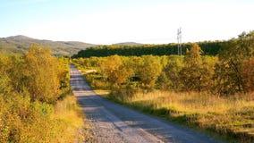 Autumn Walk Fotografía de archivo