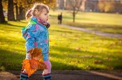Autumn walk Stock Image
