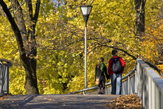 Autumn walk in city park. Rear view of young girl and boy walking in autumn city park Stock Photography
