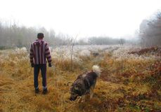 Autumn walk with the dog Royalty Free Stock Image