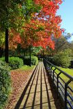 Autumn Walk with distinct shadows and brilliant fall foliage royalty free stock photography