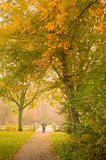 Autumn Walk. A man walking down a trail through the park on a misty Autumn morning Royalty Free Stock Photo