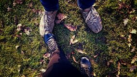 Autumn walk - outdoor activities. Legs and shoes of a couple in the background of the grass stock photos