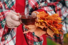 Autumn walk in park with cup of tea Stock Photos