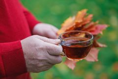Autumn walk in park with cup of tea Royalty Free Stock Photo