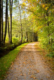 Autumn walk Royalty Free Stock Photography