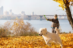 Autumn walk with pet Royalty Free Stock Images