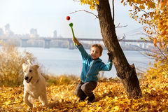 Autumn walk with pet Royalty Free Stock Photography