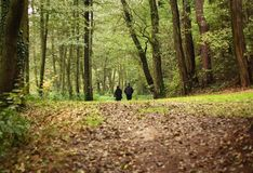 Autumn walk. Senior couple on autumn walk in nature stock photo