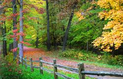 Autumn walk way Royalty Free Stock Photo