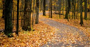 Autumn Walk Way. Scenic walk way in a park during autumn time Stock Images