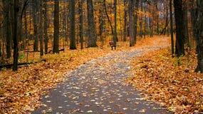 Autumn Walk Way. Scenic walk way in a park during autumn time Stock Photos