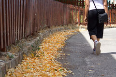 Autumn Walking. Walking in a mountain street royalty free stock photography