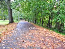 Autumn walking path, Lithuania Stock Photo