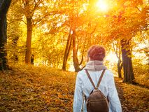 Autumn walking in the yellow park Royalty Free Stock Photos