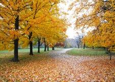 Autumn Walkway Stock Photo