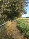 Autumn Walkway Lizenzfreie Stockbilder
