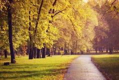 Autumn walkway in the city park Stock Photo