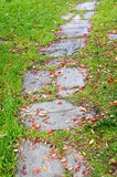 Autumn walkway Stock Photography