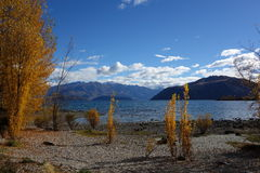 Autumn in Wanaka Stock Photos