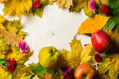 Autumn warm background of fallen yellow leaves and ripe red apples. Frame for text or photo. Applicable for an article Stock Photo