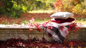 Autumn warm days. Indian summer. Picnic in the garden - blanket and pillows of gray, burgundy and green color. Autumn warm days. Indian summer. Picnic in the stock video