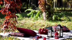 Autumn warm days. Indian summer. Picnic in the garden - blanket and pillows of gray, burgundy and green color. Autumn warm days. Indian summer. Picnic in the stock footage
