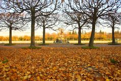 Autumn warm evening in the Upper Garden in Petergof. St. Petersburg royalty free stock photography