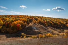 Autumn warm sunny day, hills and golden forest stock photography