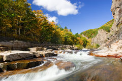 Autumn water Royalty Free Stock Image