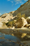 In the autumn of water. Picturesque canyon Ein-Avdat in desert Negev in Israel stock photos