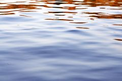 Autumn Water Stock Photography