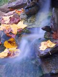 Autumn water. Water spilling over a cascade during the autumn season stock image