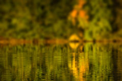 Autumn water reflection Stock Photography