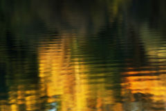 Autumn water reflection Stock Images
