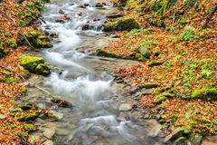 Autumn water stream Royalty Free Stock Image