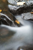 Autumn water stream Stock Image