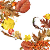 Autumn watercolor background colorful leaves. Fruit, berries, mushrooms, yellow leaves, rose hips. watercolor illustration Stock Photo