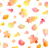 Autumn watercolor leaves pattern, vector Royalty Free Stock Photos