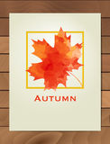 Autumn watercolor maple leaf in a square frame. Background with hand drawn autumn leaves. Sketch, design elements. Vector illustra Stock Photo
