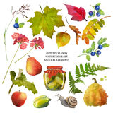 Autumn Watercolor Natural Collection Royalty-vrije Stock Foto