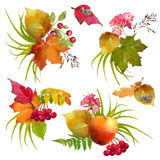 Autumn Watercolor Natural Collection Royalty-vrije Stock Fotografie