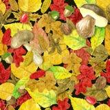 Autumn watercolor pattern Stock Photo